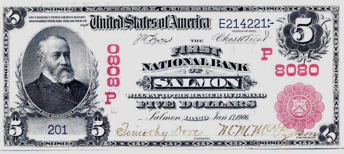 First National Bank of Salmon National Currency dollar bill
