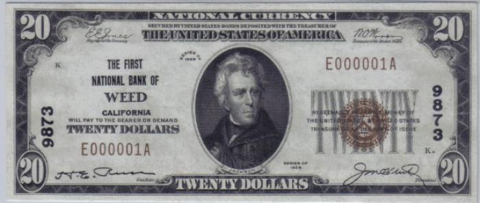 First National Bank of Weed (9873) Twenty Dollar Bill Series 1929