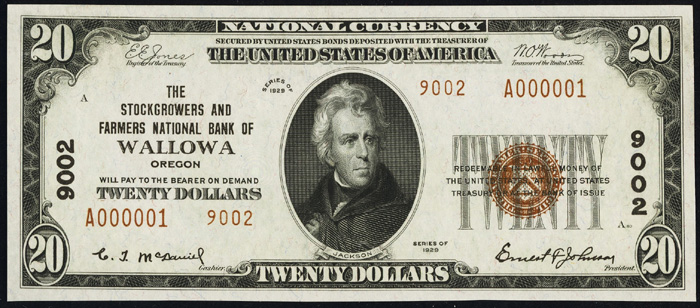 1929 Twenty Dollar Bill National Currency Note Type 2