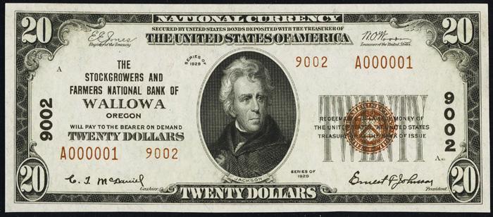 1929 Twenty Dollar Bill National Currency Note Type 2