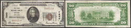 1929 $20 Twenty Dollar Bill National Currency Bank Note